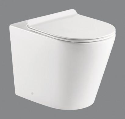 FLAY-R Унитаз приставной безободковый, P-trap BB1003CBR 3